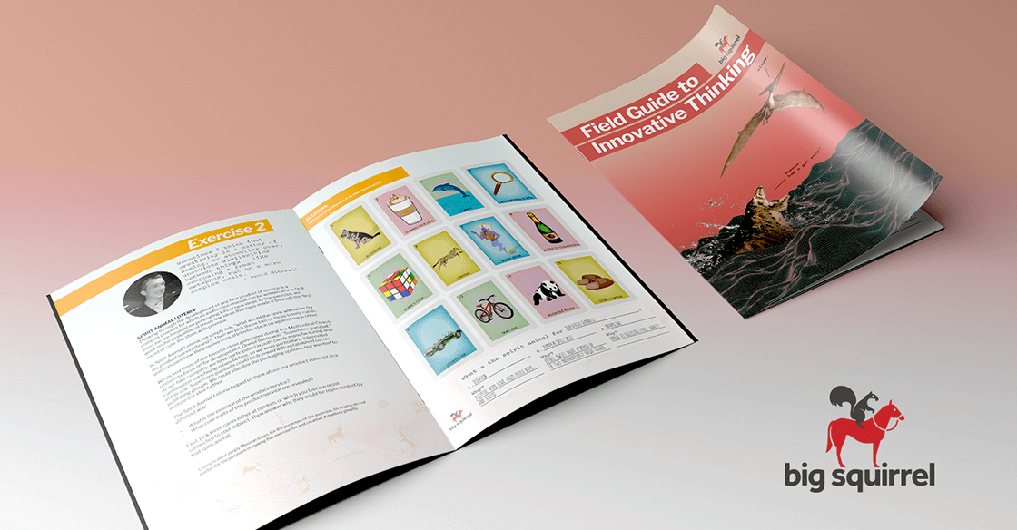 Download Big Squirrel's Field Guide to Innovative Thinking!