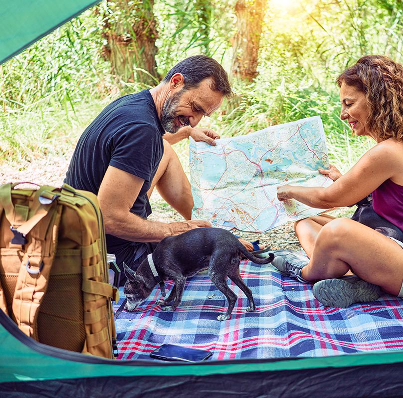 couple on blanket looking at a map